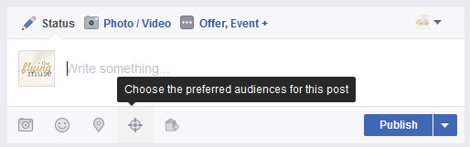 Chose the prefered audience for your post - Facebook business page