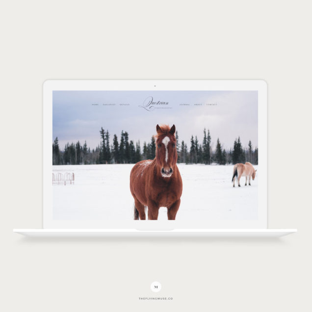 Questrian - Equestrian ProPhoto 7 Website Design Template for Photographers